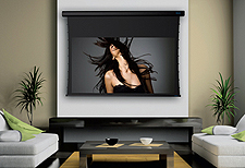 Stewart Filmscreen Projector Screen